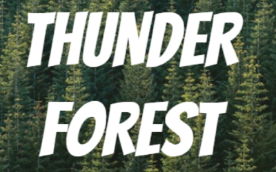 Thunder Forest – Court Métrage